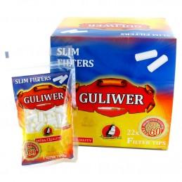 FILTROS GULIWER SLIM 240 (22u)